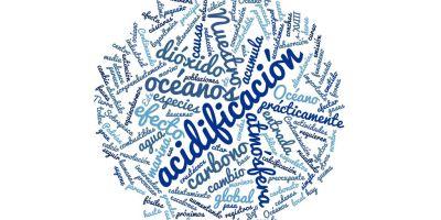 oceanos acidificacion