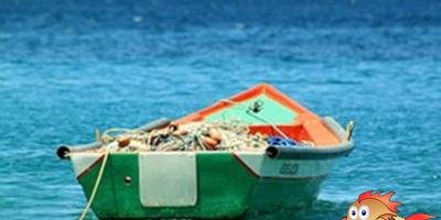 oceanos medio ambiente