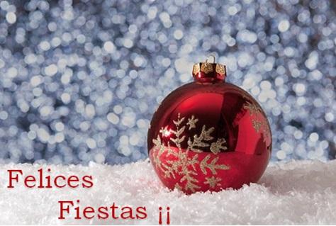 Navidad Felices Fiestas
