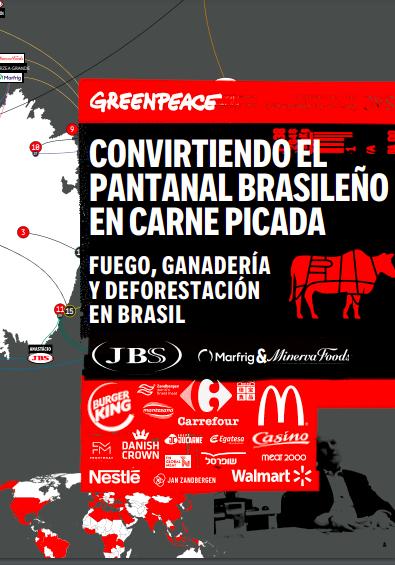Fuego, ganadería y deforestación en Brasil